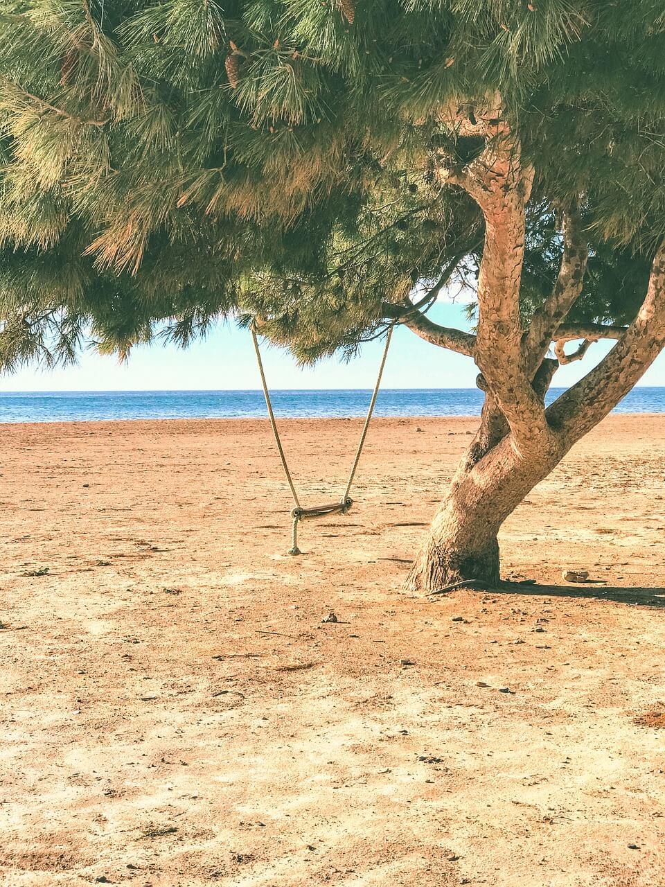 balancoire arbre